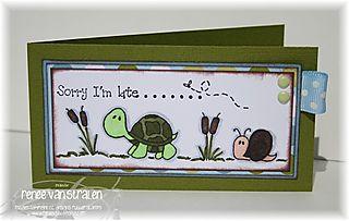 2008-05-30 CCD Froggy 02 prchvs