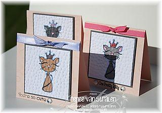 2008-07-03 ATS Pretty Kitties prchvs