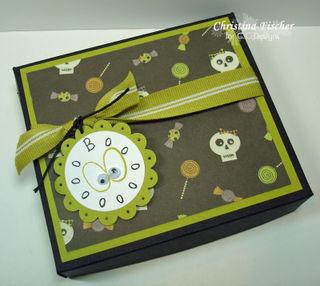 Christina_Pizza-Box