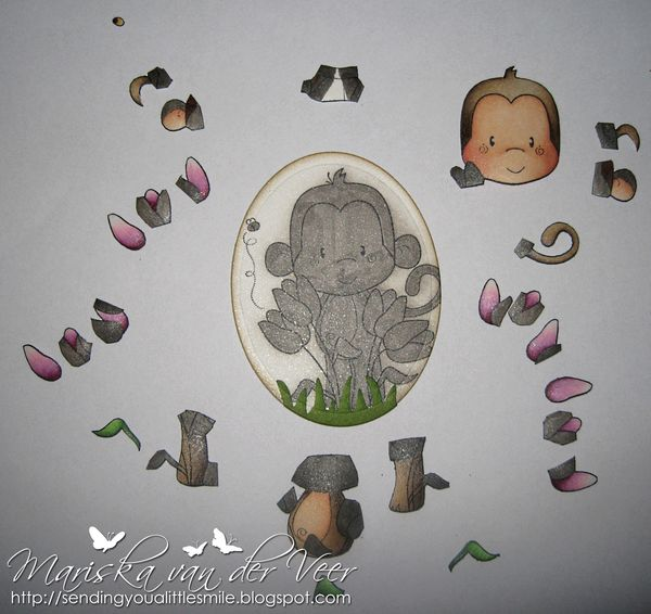 Tulip Monkey little pieces